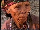 Ils étaient une fois ... les Bushmen